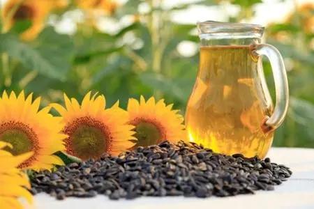 为什么葵花籽油是健康的?